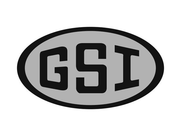 GSI_bw_600x450